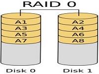 Raid cap